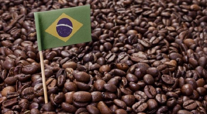 コーヒー値上げ必須 ブラジルで干ばつ・霧害発生