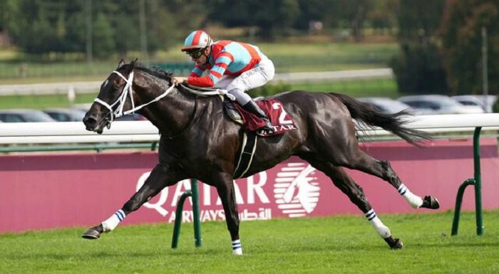 【フォワ賞】ディープボンドV 日本馬3頭目の偉業 凱旋門賞へ弾み