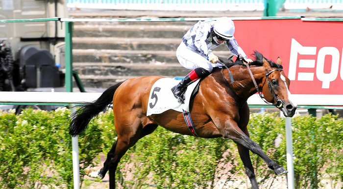 【凱旋門賞】武豊×ブルームで9度目の挑戦「日本の馬、負かしたらごめんね」